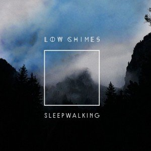 Sleepwalking sleeve